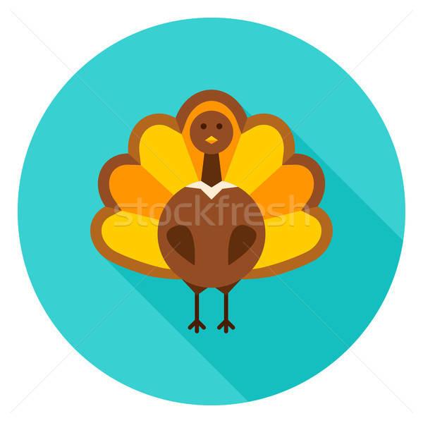 благодарение Турция круга икона осень сезонный Сток-фото © Anna_leni