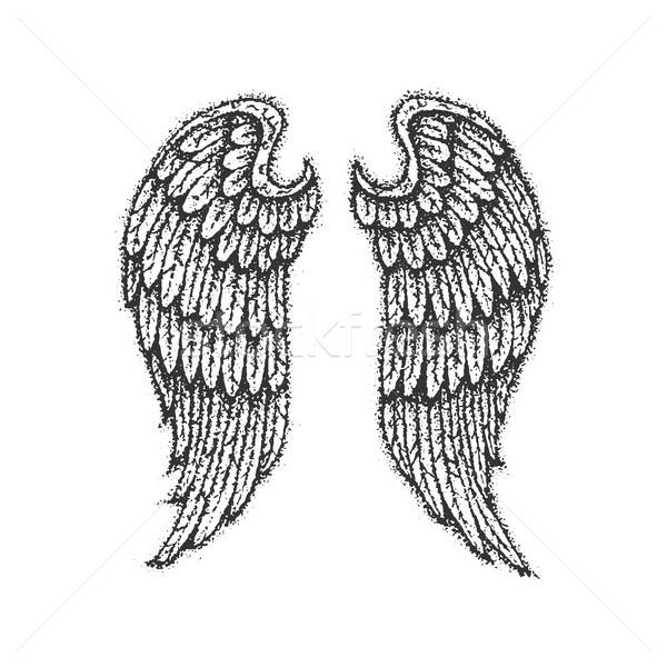 Dotwork Angel Wings Stock photo © Anna_leni