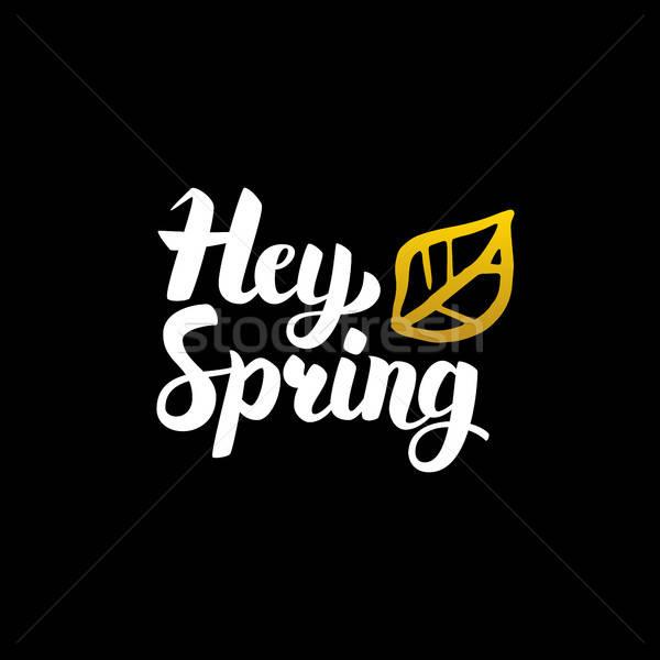 Hey Spring Handwritten Calligraphy Stock photo © Anna_leni