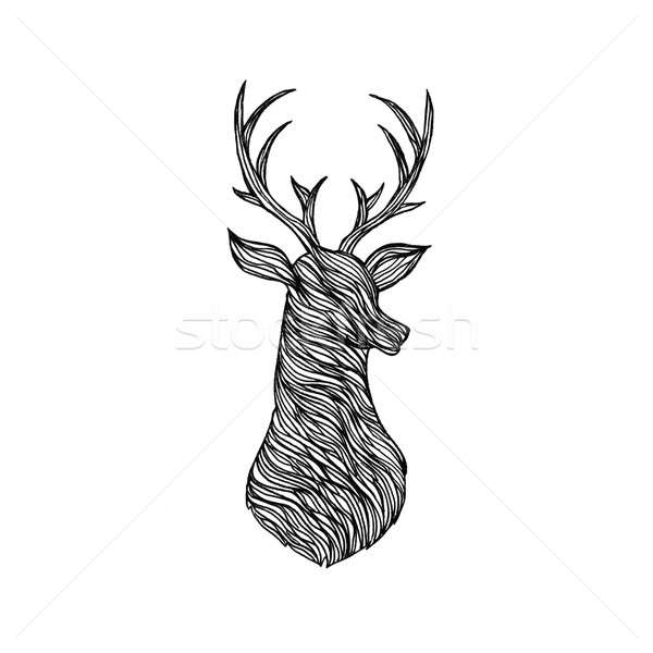 Doodle cerfs silhouette illustration style tshirt Photo stock © Anna_leni