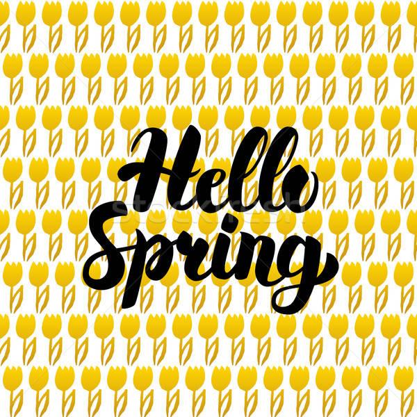 Olá primavera cartão postal projeto natureza cartão Foto stock © Anna_leni