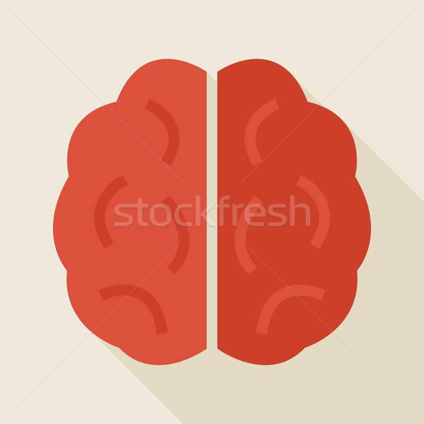 Flat Knowledge Human Brain Illustration with long Shadow Stock photo © Anna_leni