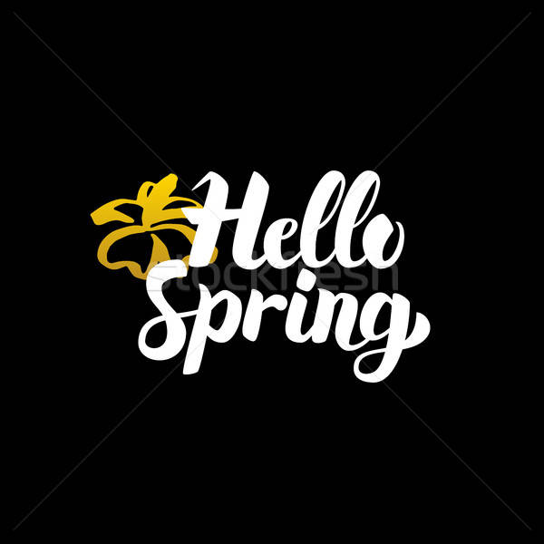 Kézzel írott kalligráfia hello tavasz természet dizájn elem Stock fotó © Anna_leni