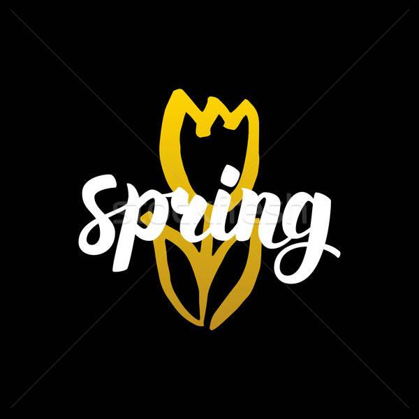 Wiosną kaligrafia charakter projektu Zdjęcia stock © Anna_leni