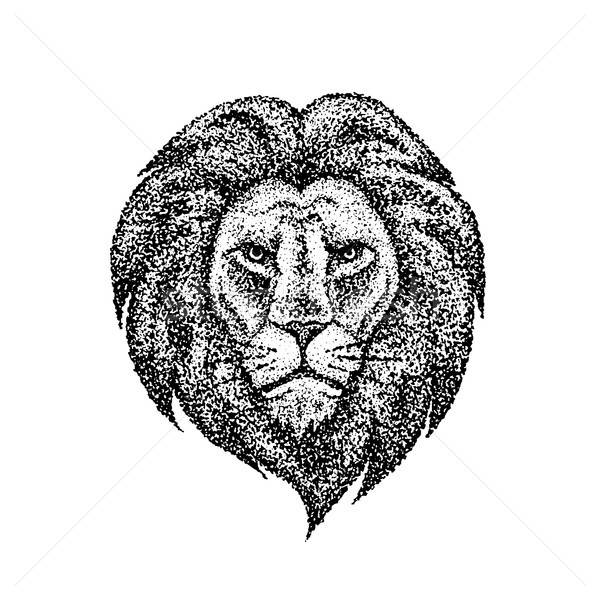 Dotwork Lion Face Stock photo © Anna_leni