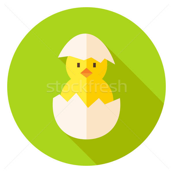 Hatched Chicken in Eggshell Circle Icon Stock photo © Anna_leni