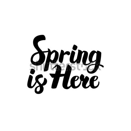 Spring is Here Lettering Stock photo © Anna_leni