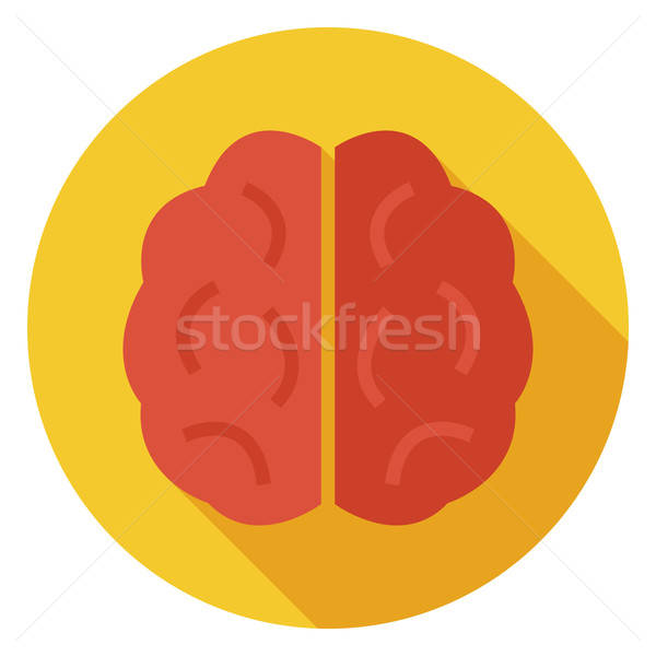 Flat Knowledge and Wisdom Brain Circle Icon with Long Shadow Stock photo © Anna_leni