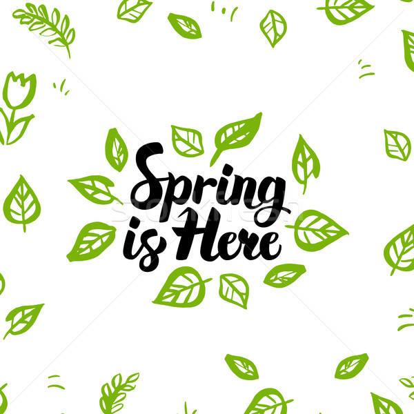 春 ここで 挨拶 はがき 自然 葉 ストックフォト © Anna_leni