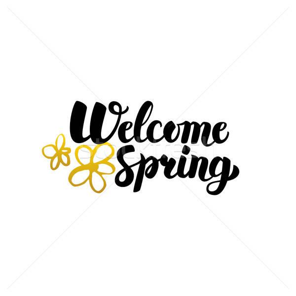 üdvözlet tavasz kézzel írott kalligráfia természet növények Stock fotó © Anna_leni