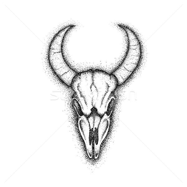 Cow Skull Dotwork Stock photo © Anna_leni
