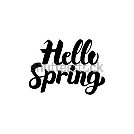 Olá primavera caligrafia isolado branco Foto stock © Anna_leni