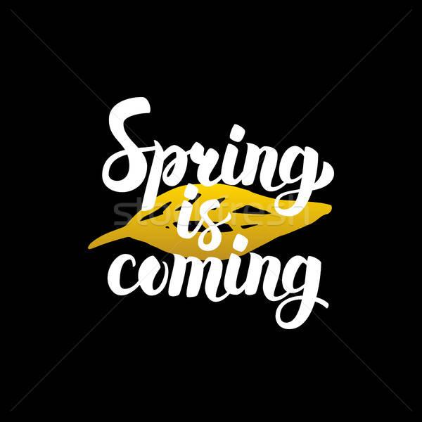 Frühling handschriftlich Schriftkunst Natur Design Stock foto © Anna_leni