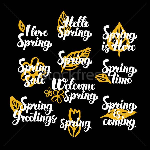 весна рисованной кавычки весны дизайна Сток-фото © Anna_leni