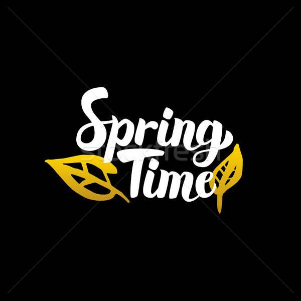 Spring Time Handwritten Calligraphy Stock photo © Anna_leni