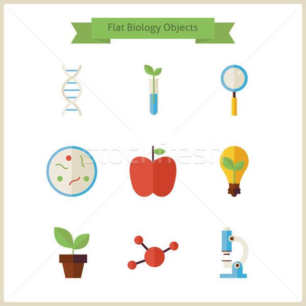 Iskola biológia tudomány tárgyak szett vektor Stock fotó © Anna_leni