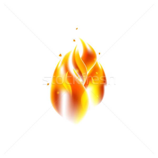 Fire Flame over White Stock photo © Anna_leni