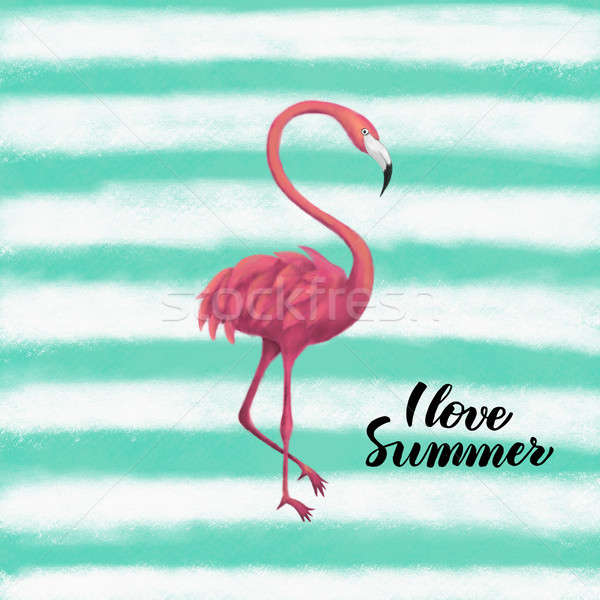 Flamingo sevmek yaz örnek tropikal Stok fotoğraf © Anna_leni
