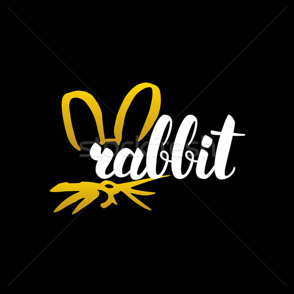 Rabbit Handwritten Calligraphy Stock photo © Anna_leni