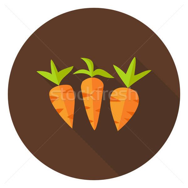 ストックフォト: 人参 · 野菜 · サークル · アイコン · 長い · 影
