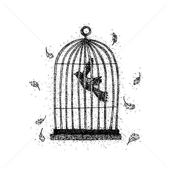 Kuş Kafesi Dövme Kroki Arka Plan Vektör Ilüstrasyonu