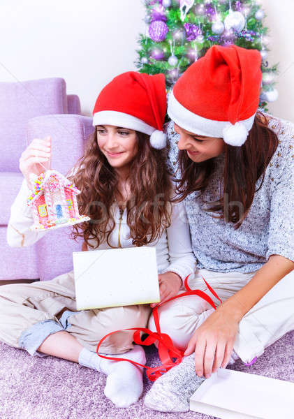Christmas joy at family home Stock photo © Anna_Om
