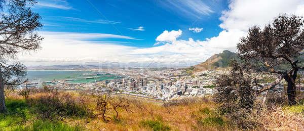 Panoramisch Cape Town verbazingwekkend landschap kust Stockfoto © Anna_Om
