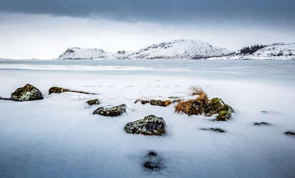 Güzel kış manzara şaşırtıcı görmek dondurulmuş Stok fotoğraf © Anna_Om