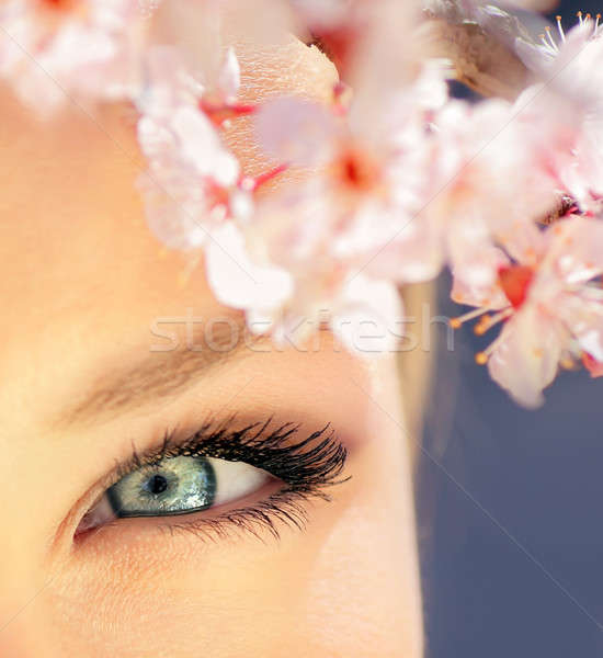 Beautiful blue eye Stock photo © Anna_Om