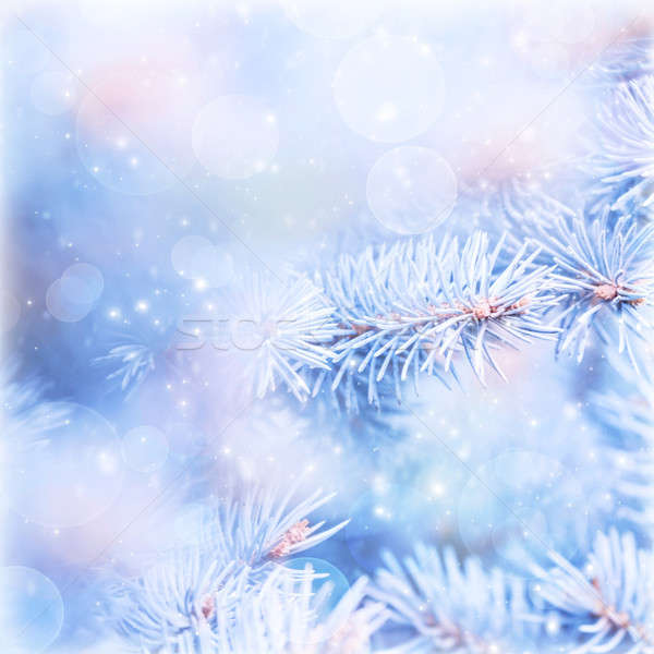 Wintertime background Stock photo © Anna_Om