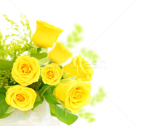 Stock photo: Fresh roses border
