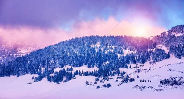 зима гор пейзаж красивой розовый закат Сток-фото © Anna_Om