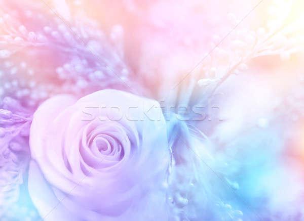 нежный закрывается красивой цветочный пастельный цвета Сток-фото © Anna_Om