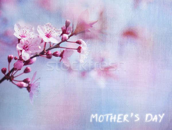 Foto stock: Mães · dia · cartão · belo · floral