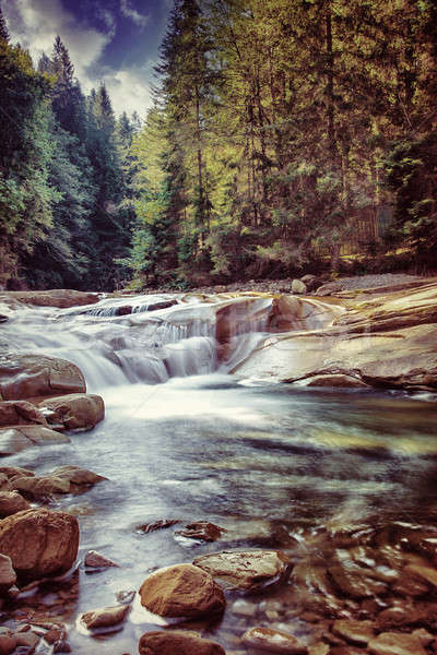 Beautiful waterfall in the forest Stock photo © Anna_Om
