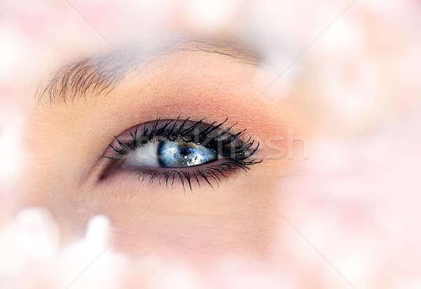 Beautiful blue eye Stock photo © Anna_Om