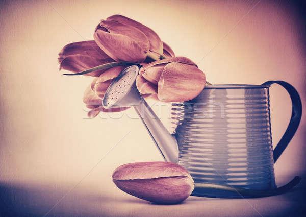 Retró stílus tulipánok virágcsokor fotó fémes locsolókanna Stock fotó © Anna_Om