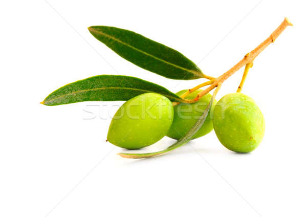 Fresh olives Stock photo © Anna_Om