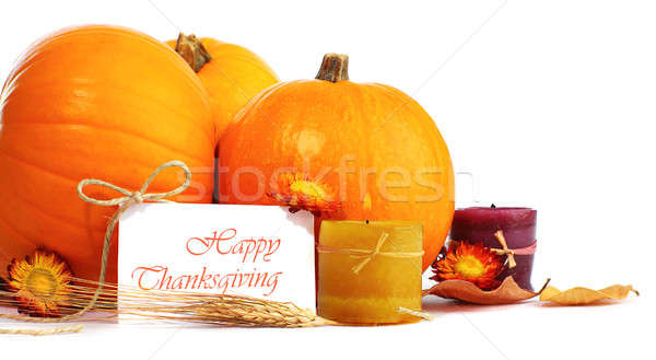 Thanksgiving holiday decoration Stock photo © Anna_Om