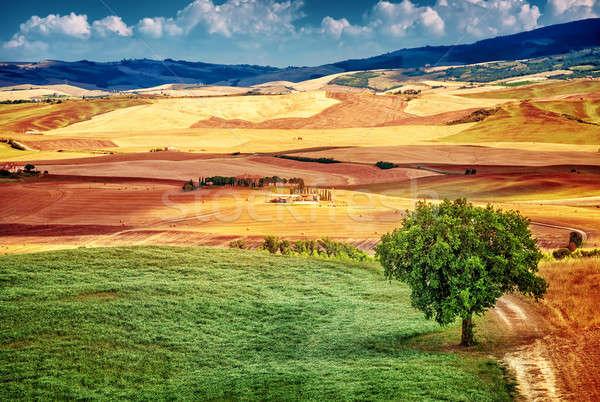 красивой пейзаж удивительный мнение холмы Сток-фото © Anna_Om