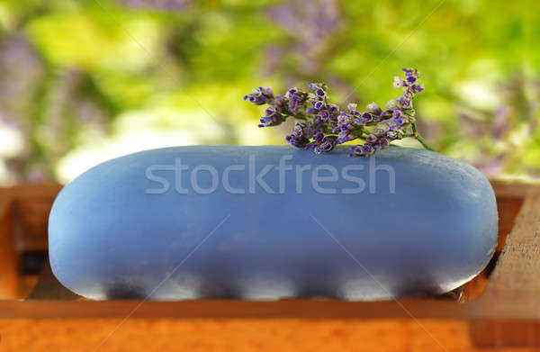 Soap with tiny flower Stock photo © Anna_Om