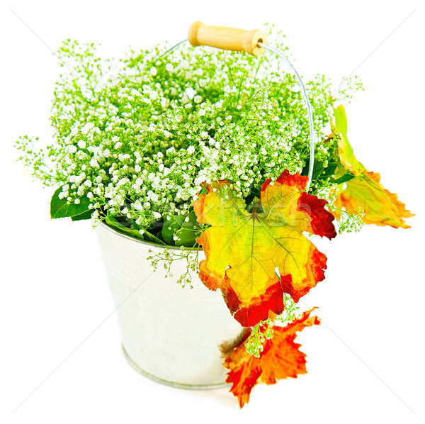 Bucket of autumn leaves & wildflowers Stock photo © Anna_Om