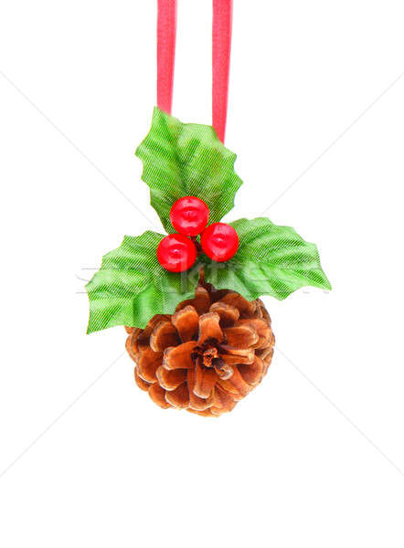 Holly berry and pine cone Stock photo © Anna_Om