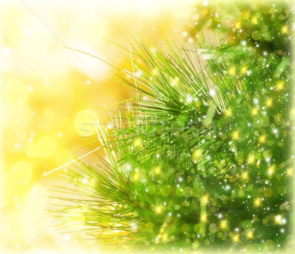 Christmas tree border Stock photo © Anna_Om
