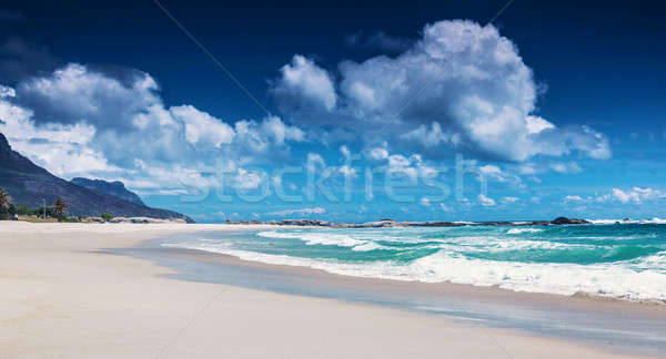 Beach of South Africa  Stock photo © Anna_Om