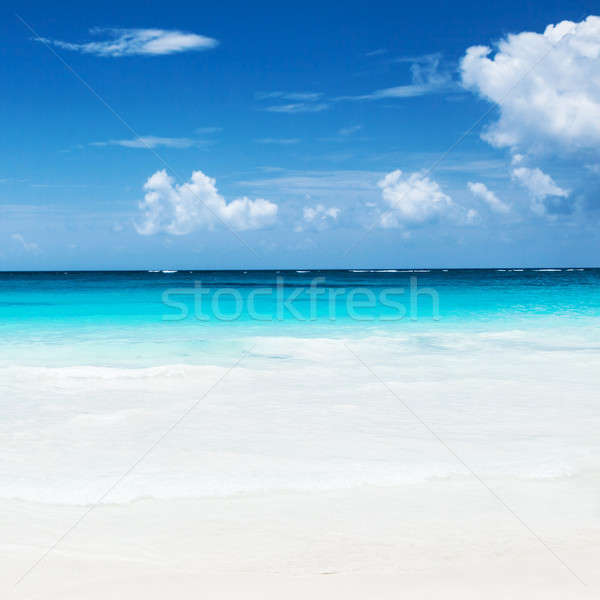 Beautiful sandy beach Stock photo © Anna_Om