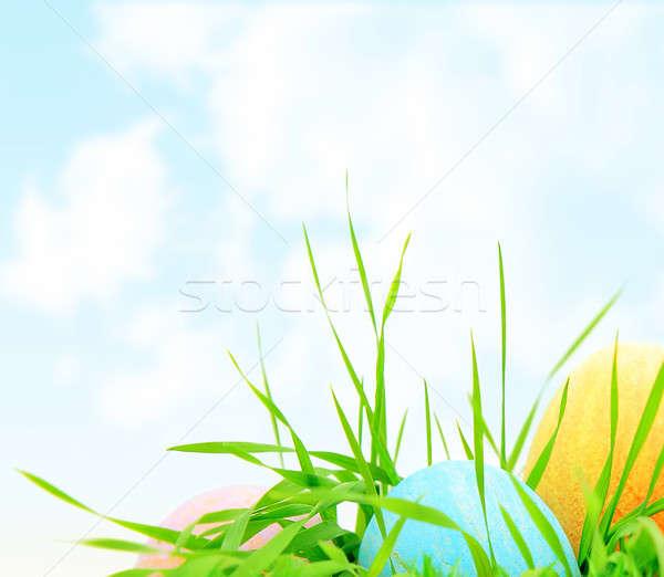 Pasen gekleurde eieren grens kleurrijk eieren vers Stockfoto © Anna_Om