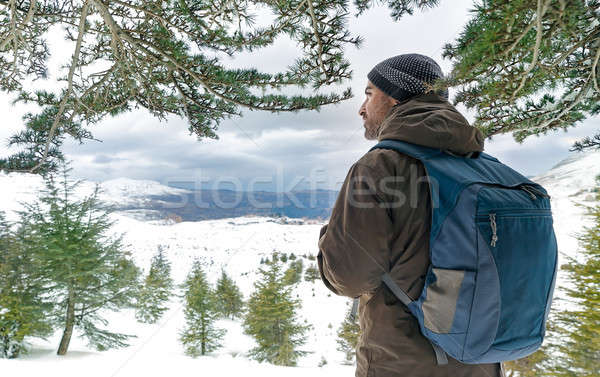 Traveler man in the snowy mountains Stock photo © Anna_Om