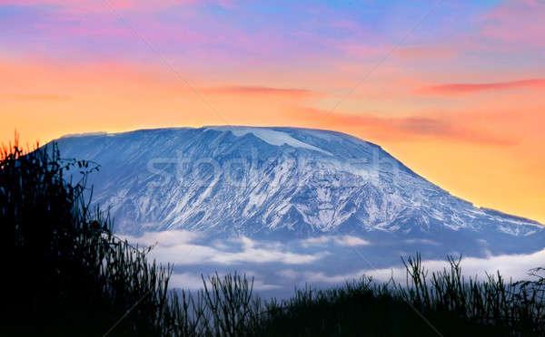 Kilimanjaro  Stock photo © Anna_Om