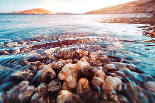 Beauty of underwater nature Stock photo © Anna_Om